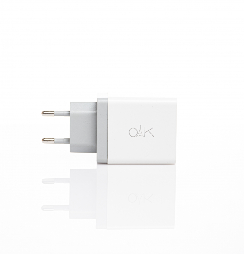 OAK CHARGER CH-3001